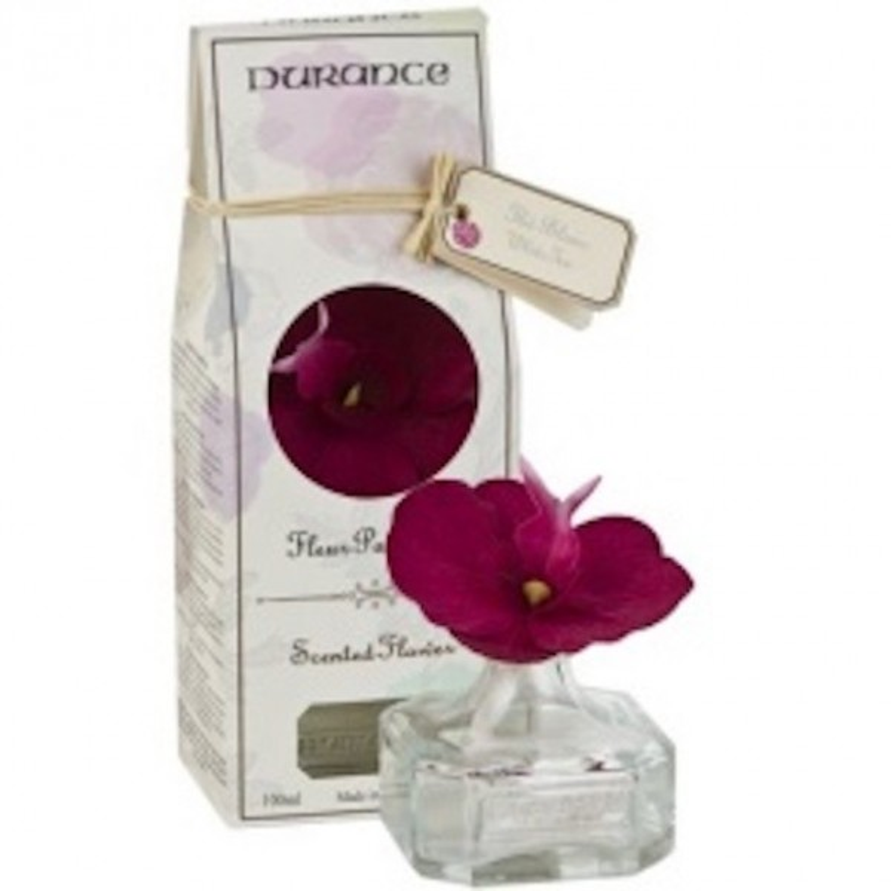 Orquidia perfumada Té blanc